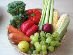 Exercise and Nutrition for the Vegetarian